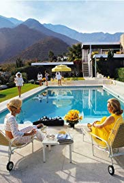 Watch Free Slim Aarons: The High Life (2016)